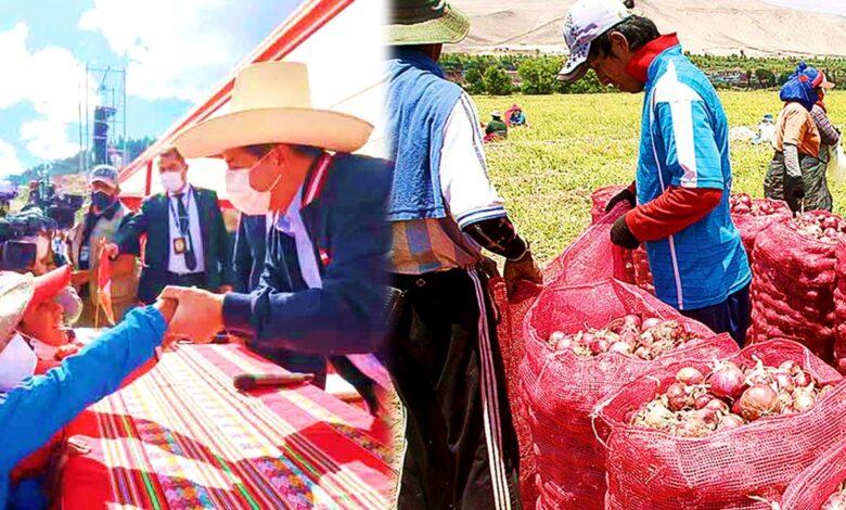 CASTILLO ANUNCIA DESDE HOY INICIO LA SEGUNDA REFORMA AGRARIA - Peruano Informado